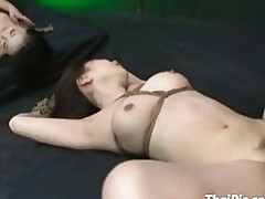 Two Tied Hairy Asians Fucked Rough